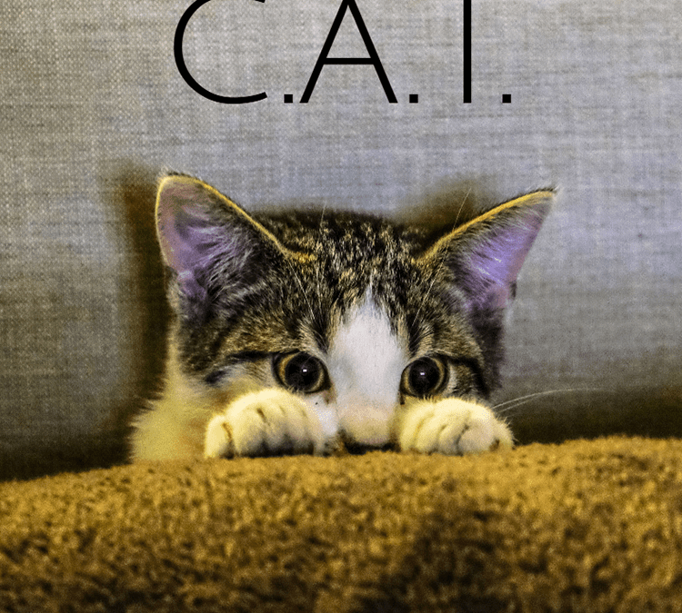 What is the C.A.T.?